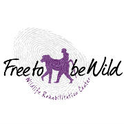 Free To Be Wild X Project Conservation